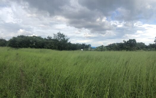 Chalong land for sale