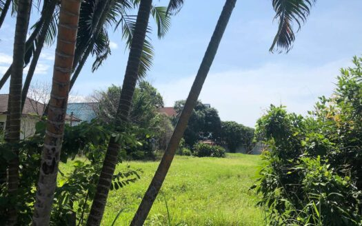 Nai Harn land for sale