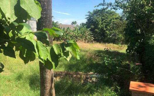 Land for sale in Nai Harn Baan Bua Phuket